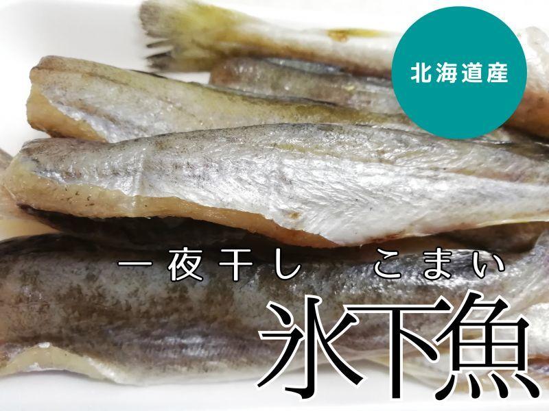 魚 こまい